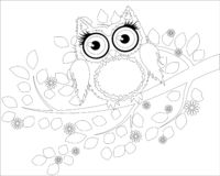 Coloring book for adult and older children. Coloring page with cute owl and floral frame. Outline drawing in zentangle style vector illustration