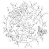 Coloring book for adult and older children. Coloring page with decorative vintage flowers and decorative butterflies. Outline hand drawn Stock Photography
