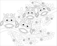 Coloring book for adult and older children. Coloring page with cute owl and floral frame. Outline drawing in zentangle style stock illustration