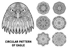 Coloring book for adults.  Head of a severe eagle with patterns. Stock Photo