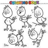 Coloring Book. Animal Cartoon Coloring Book - Bird Stock Image