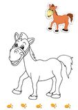 Coloring book of animals 19 - horse Royalty Free Stock Image