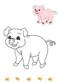 Coloring book of animals 5 - pig. Page with the pig to be color for children. Digital illustration realized with Photoshop with the sketch in black and white and Stock Photo