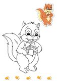 Coloring book of animals 7 - squirrel. Page with the squirrel to be color for children. Digital illustration realized with Photoshop with the sketch in black and Royalty Free Stock Photography