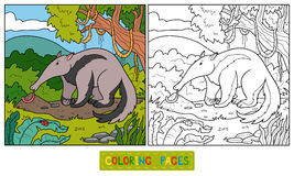 Coloring book (anteater) Royalty Free Stock Photography