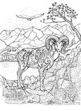 Coloring book with argali, arkhar Stock Photo