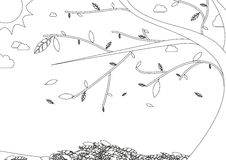 Coloring book - autumn landscape with tree with falling leaves Royalty Free Stock Images