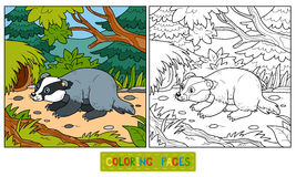 Coloring book (badger and background) Royalty Free Stock Image