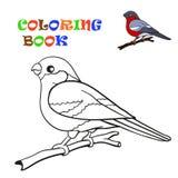 Coloring book, bird bullfinch Royalty Free Stock Photos