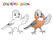 Coloring book bird - isolated vector illustration. Stock Image