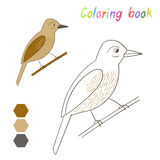 Coloring book bird xenops kids layout for game Stock Photography
