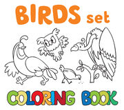 Coloring book with birds. Coloring book or coloring picture with birds, vulrure, owl,quail and pigeon stock illustration