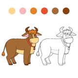 Coloring book (bull) Stock Photos