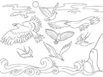 Coloring book cartoon for children. Above the sea birds of different kinds fly. Black and white lines. Raster illustration Stock Photo