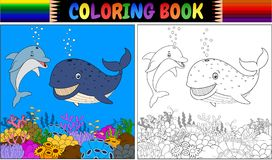 Coloring book with cartoon dolphin and whale. Illustration of Coloring book with cartoon dolphin and whale Stock Photo