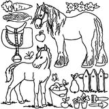 Coloring book, Cartoon farm animals. Horse, bird, vegetables, fruits, garden tools and decoration elements for kid drawing Stock Images