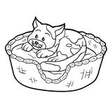 Coloring book (cat in a basket on a pillow) Royalty Free Stock Images