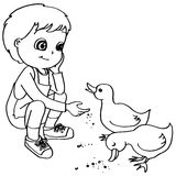Coloring book  child feeding ducks vector Royalty Free Stock Photos