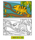 Coloring book for children (chameleon) Stock Photography