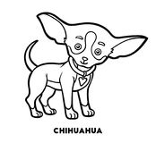 Coloring book, Dog breeds: Chihuahua Stock Photo