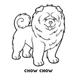 Coloring book, Dog breeds: Chow chow Royalty Free Stock Photos