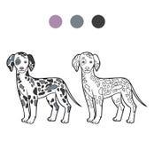 Coloring book, Dog breeds: Dalmatian Royalty Free Stock Image