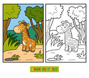 Coloring book for children (giraffe and background) Royalty Free Stock Image