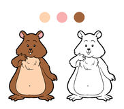 Coloring book for children: hamster animal Royalty Free Stock Image