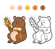 Coloring book for children: hamster animal Stock Images