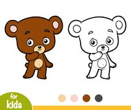 Coloring book for children, little Bear Stock Images
