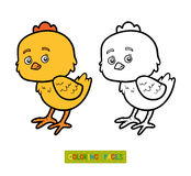 Coloring book for children, little chick Stock Images