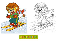 Coloring book for children: little lion skiing Stock Photo