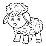 Coloring book for children, little sheep Stock Photos