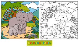 Coloring book for children (two elephants) Stock Images