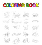Coloring book with collection of insects stock illustration