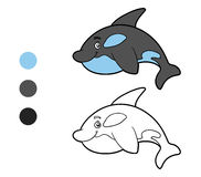 Coloring book, coloring page (killer whale) Stock Photo