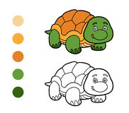 Coloring book, coloring page (turtle) Stock Photo