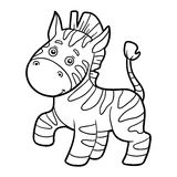 Coloring book, coloring page (zebra) vector illustration