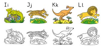 Animals alphabet or ABC. Coloring book. Coloring book or coloring picture of funny iguana, jaguar, kangaroo and lion. Animals zoo alphabet or ABC Royalty Free Illustration