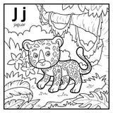 Coloring book, colorless alphabet. Letter J, jaguar. Coloring book for children, colorless alphabet. Letter J, jaguar Stock Photo
