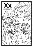 Coloring book, colorless alphabet. Letter X, xenosaurus. Coloring book for children, colorless alphabet. Letter X, xenosaurus stock illustration