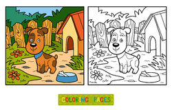 Coloring book (dog and background) Stock Photo