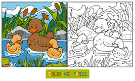 Coloring Book (duck) Stock Images