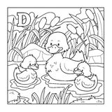 Coloring book (duck), colorless illustration (letter D) Royalty Free Stock Photography