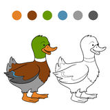 Coloring book (duck) stock illustration