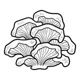 Coloring book. Edible mushrooms, oyster Royalty Free Stock Images