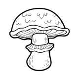 Coloring book. Edible mushrooms, portobello. Coloring book for children. Edible mushrooms, portobello Stock Photos