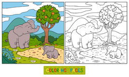 Coloring book (elephant) Royalty Free Stock Image