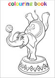 Coloring Book With Elephant Circus Royalty Free Stock Photo