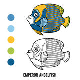 Coloring book, Emperor angelfish Stock Photos
